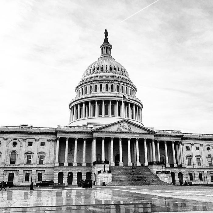 photoblog image The Capitol